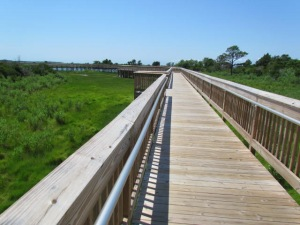cincoboardwalk